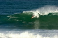 Simon_surfing_cribber