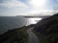 Wild_walking_gower_coast